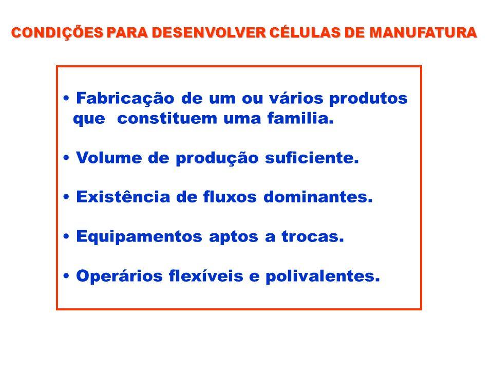 Fabricação de um ou vários produtos que constituem uma familia.