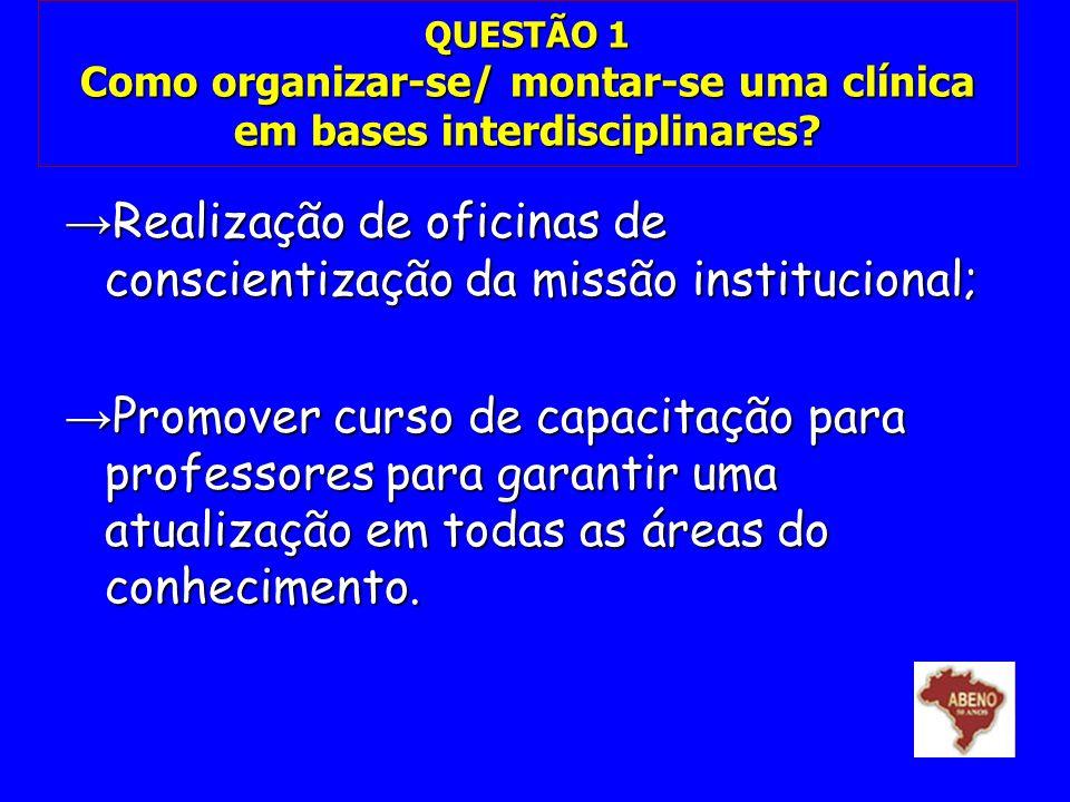 Realização de oficinas de conscientização da missão institucional;