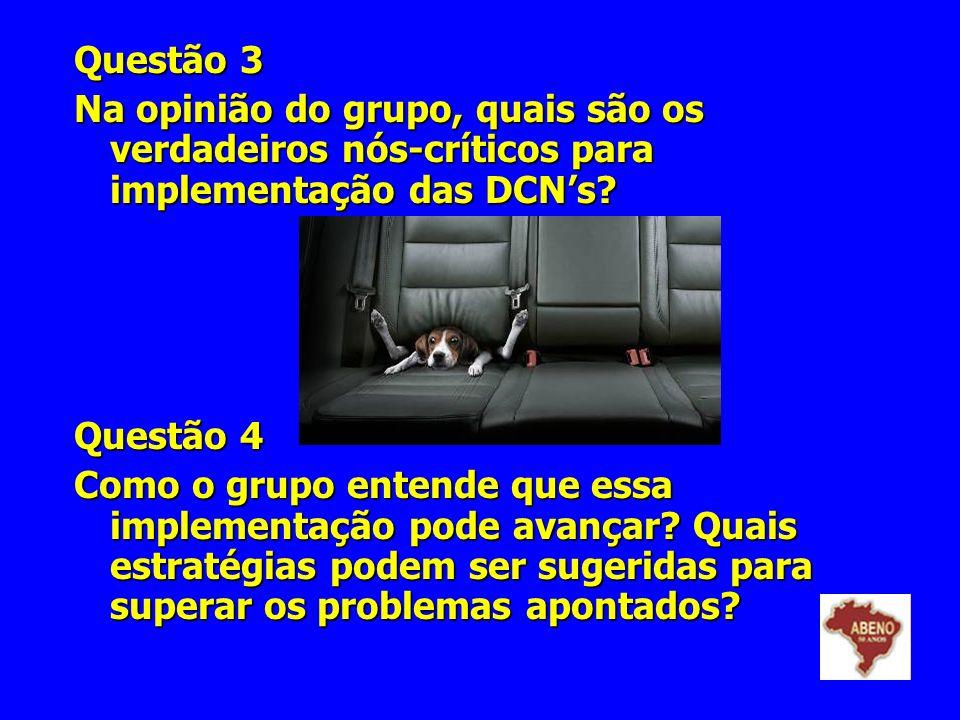 Questão 3 Na opinião do grupo, quais são os verdadeiros nós-críticos para implementação das DCN's Questão 4.