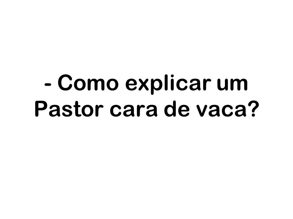- Como explicar um Pastor cara de vaca