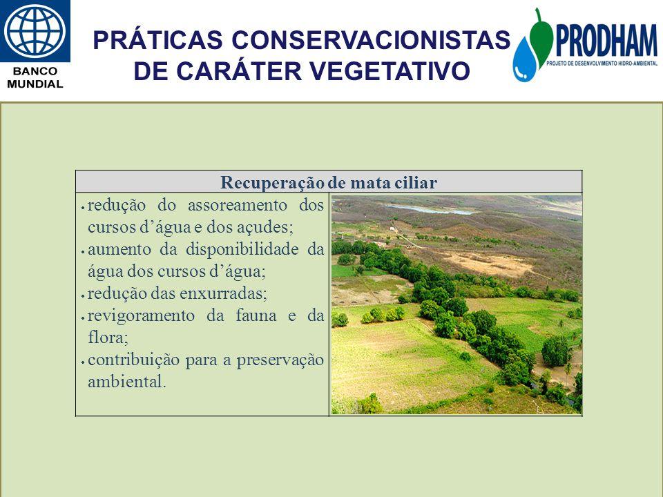 PRÁTICAS CONSERVACIONISTAS DE CARÁTER VEGETATIVO