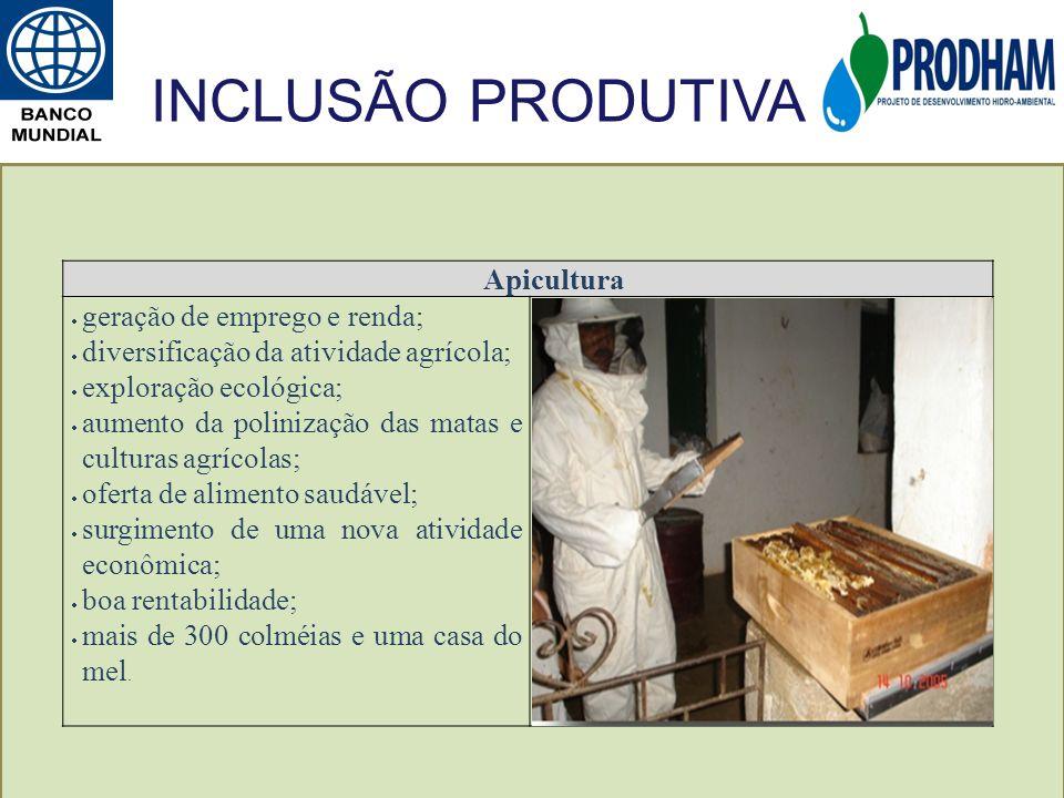 INCLUSÃO PRODUTIVA Apicultura geração de emprego e renda;
