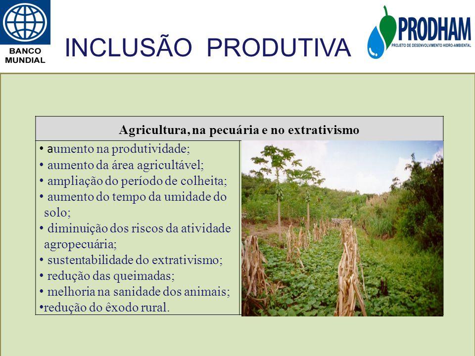 Agricultura, na pecuária e no extrativismo