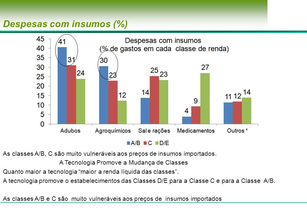 Despesas com insumos (%)