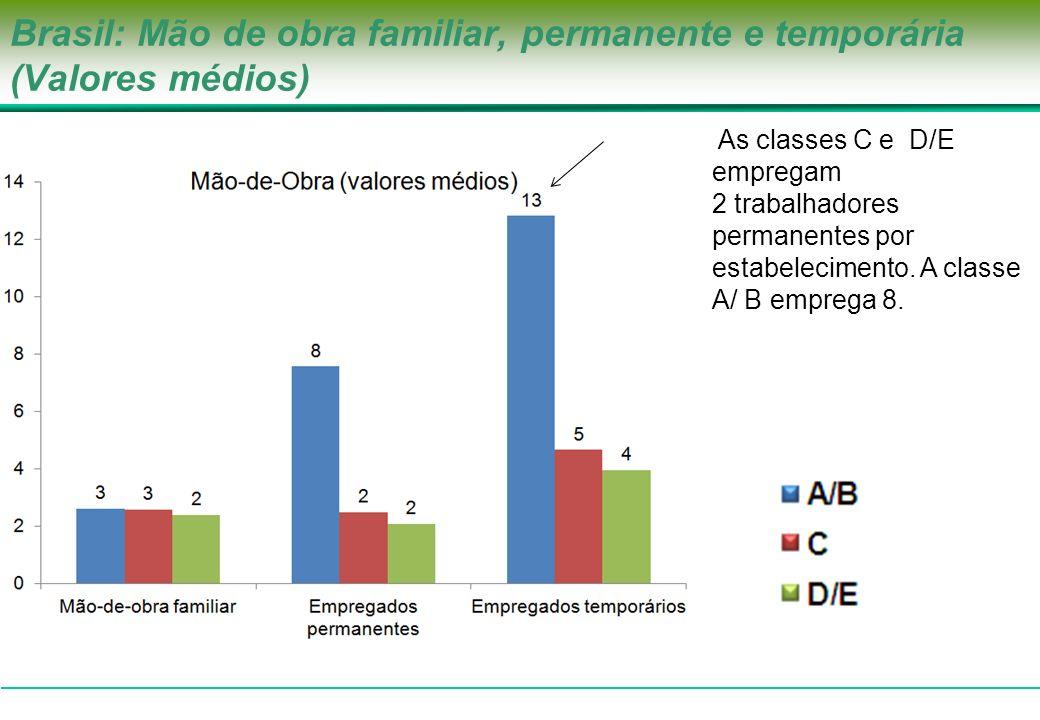 Brasil: Mão de obra familiar, permanente e temporária (Valores médios)