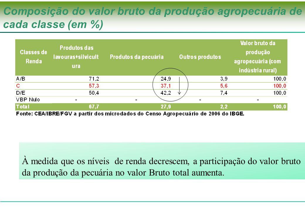 Composição do valor bruto da produção agropecuária de cada classe (em %)