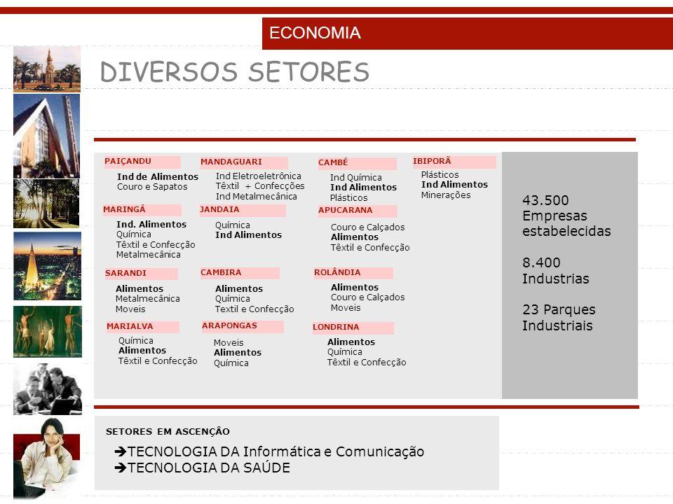 DIVERSOS SETORES ECONOMIA 43.500 Empresas estabelecidas