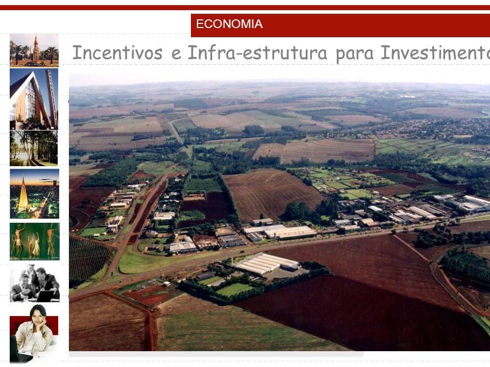 Incentivos e Infra-estrutura para Investimentos