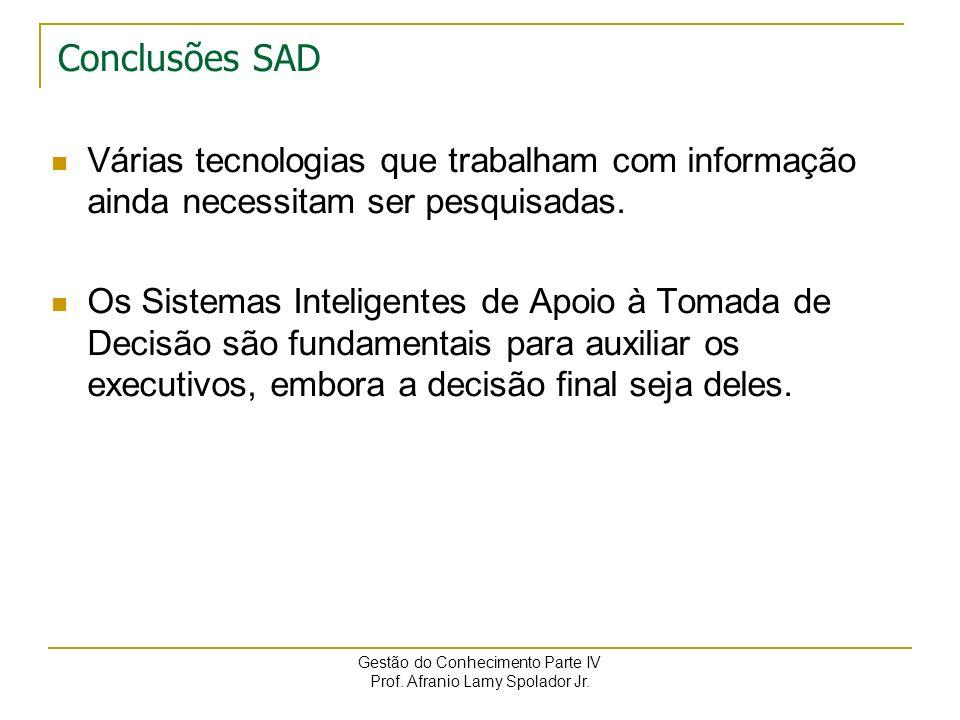 Conclusões SAD Várias tecnologias que trabalham com informação ainda necessitam ser pesquisadas.