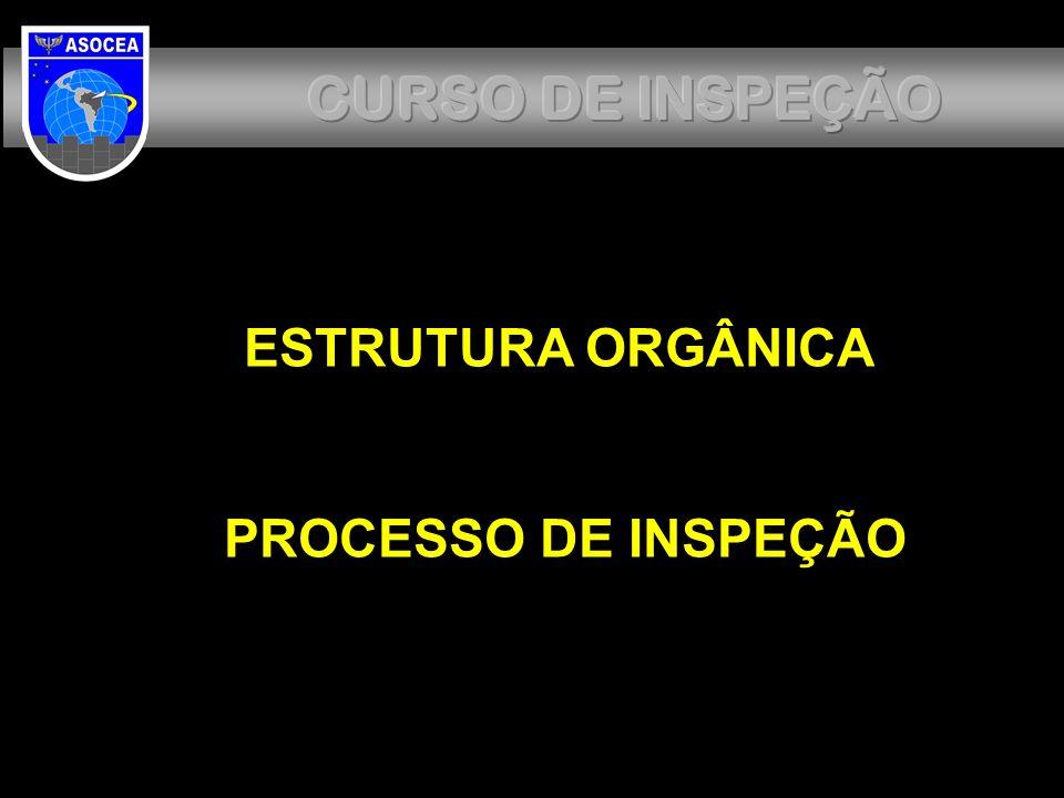 CURSO DE INSPEÇÃO ESTRUTURA ORGÂNICA PROCESSO DE INSPEÇÃO