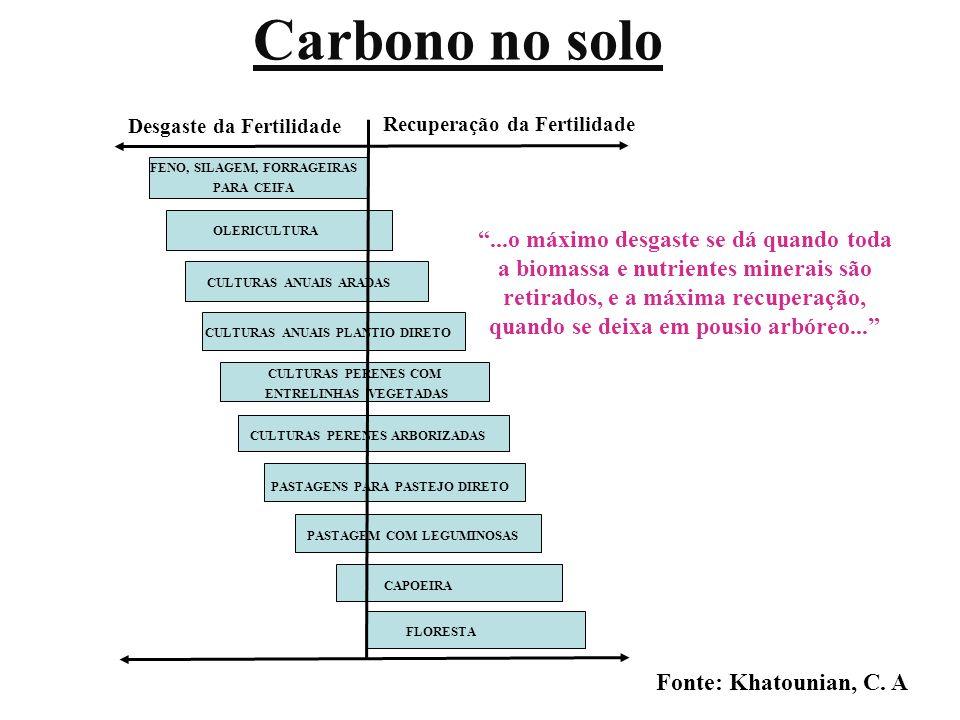 Carbono no solo FLORESTA. CAPOEIRA. PASTAGEM COM LEGUMINOSAS. PASTAGENS PARA PASTEJO DIRETO. CULTURAS PERENES ARBORIZADAS.