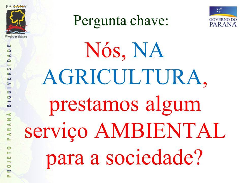 Pergunta chave: Nós, NA AGRICULTURA, prestamos algum serviço AMBIENTAL para a sociedade