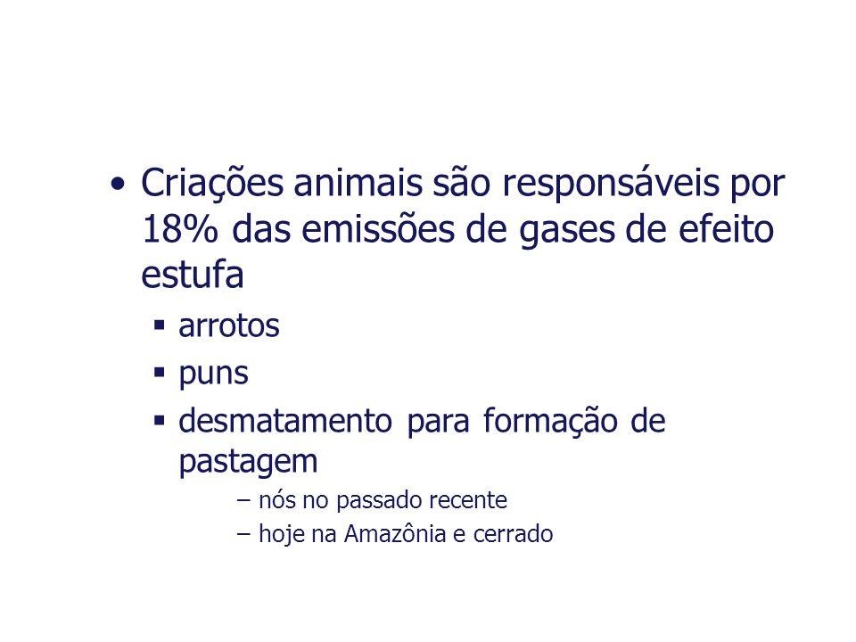 Criações animais são responsáveis por 18% das emissões de gases de efeito estufa