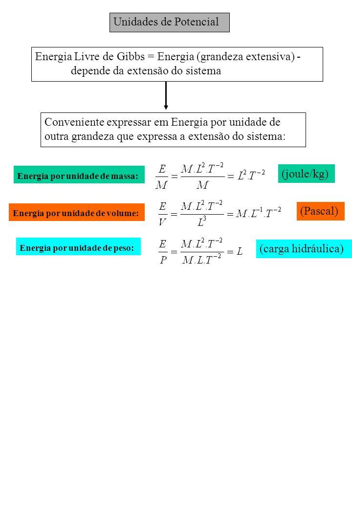 Energia Livre de Gibbs = Energia (grandeza extensiva) -