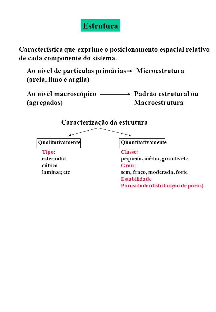 Estrutura Característica que exprime o posicionamento espacial relativo. de cada componente do sistema.