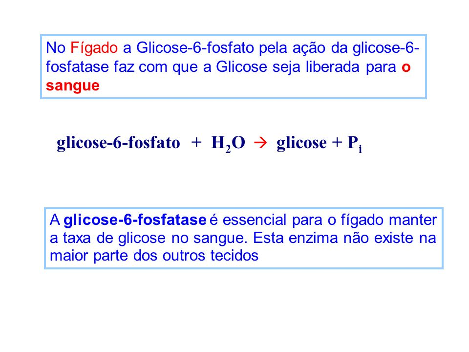glicose-6-fosfato + H2O  glicose + Pi