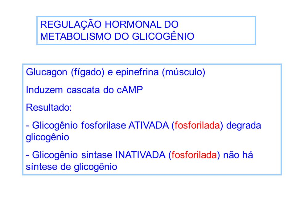 REGULAÇÃO HORMONAL DO METABOLISMO DO GLICOGÊNIO