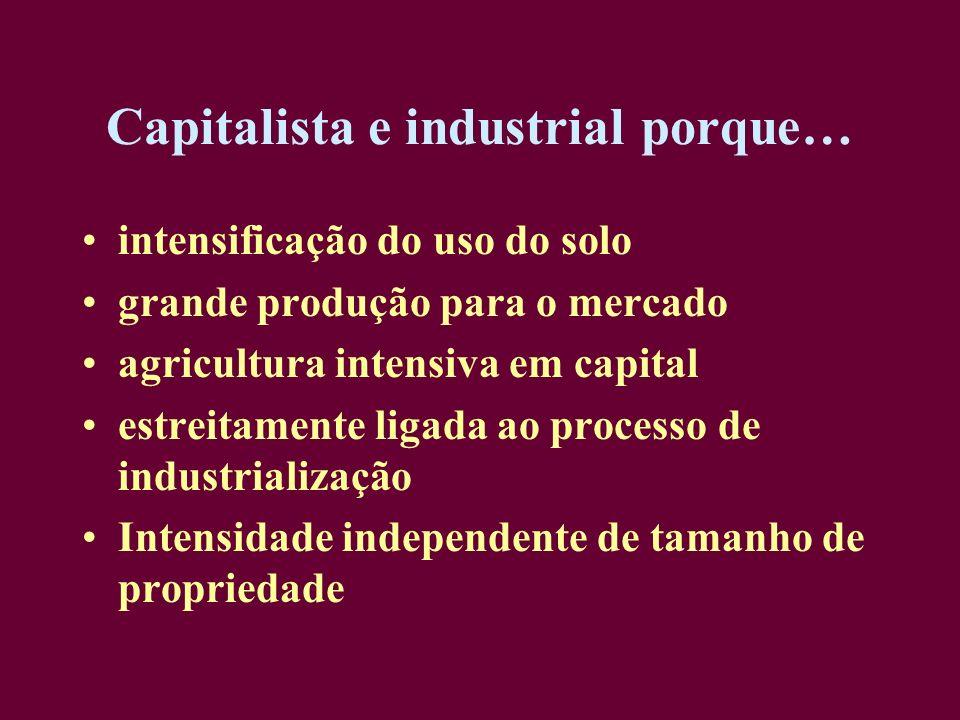 Capitalista e industrial porque…