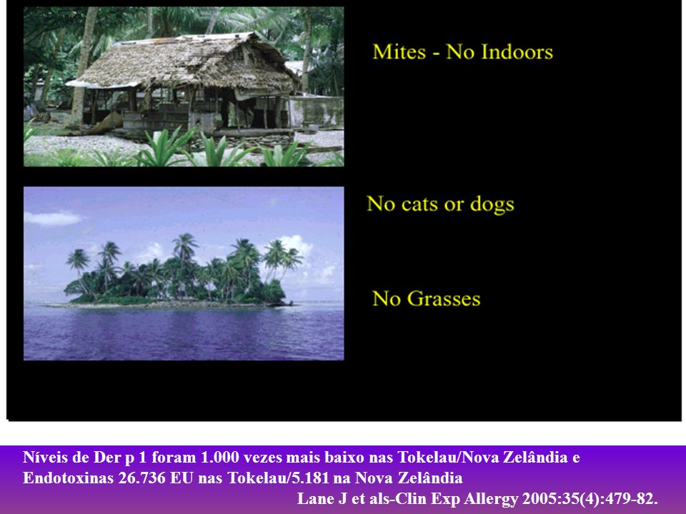 Níveis de Der p 1 foram 1.000 vezes mais baixo nas Tokelau/Nova Zelândia e