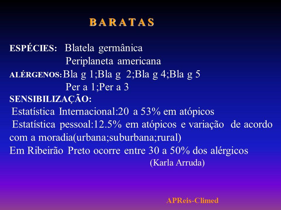 Em Ribeirão Preto ocorre entre 30 a 50% dos alérgicos (Karla Arruda)