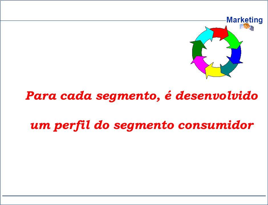 Para cada segmento, é desenvolvido um perfil do segmento consumidor