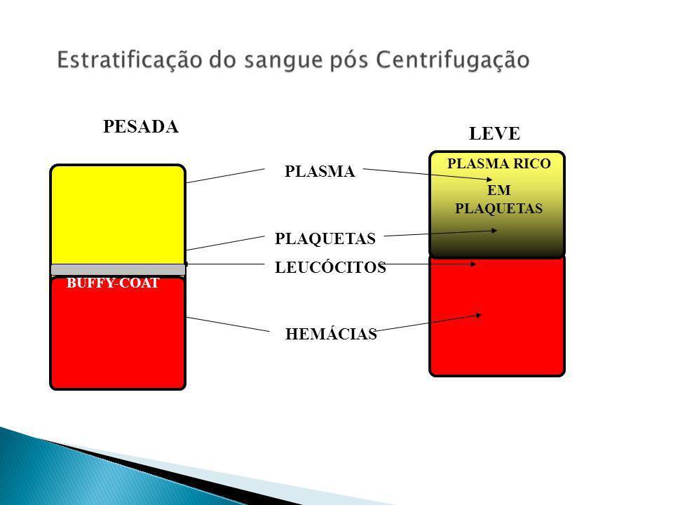 PESADA LEVE PLASMA PLAQUETAS LEUCÓCITOS HEMÁCIAS PLASMA RICO