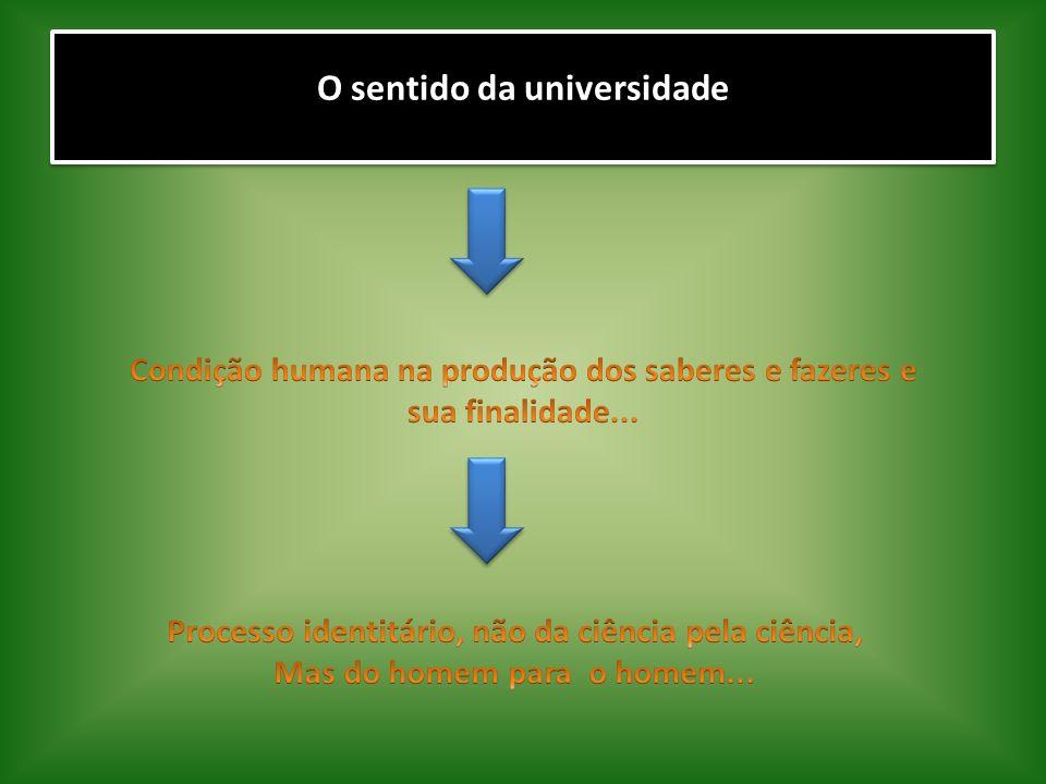 O sentido da universidade