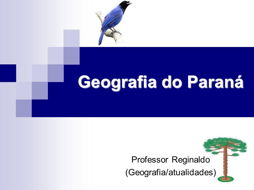 Professor Reginaldo (Geografia/atualidades)
