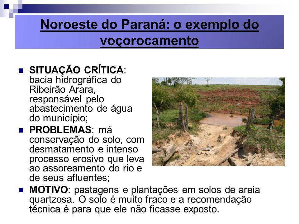 Noroeste do Paraná: o exemplo do voçorocamento