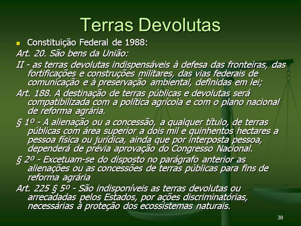 Terras Devolutas Constituição Federal de 1988: