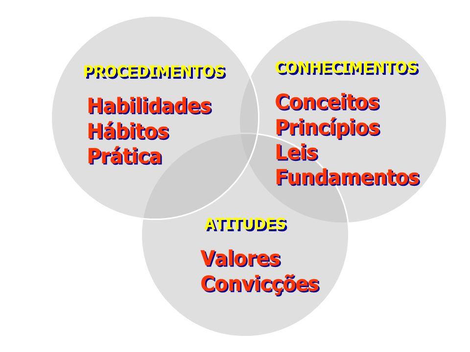 Conceitos Habilidades Princípios Hábitos Leis Prática Fundamentos