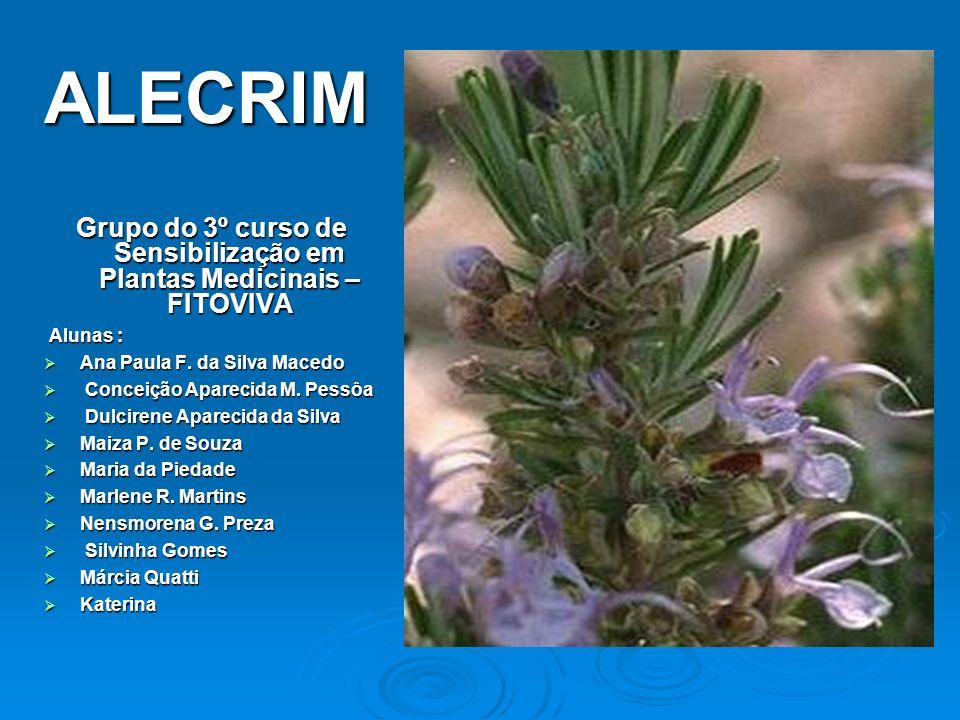 Grupo do 3º curso de Sensibilização em Plantas Medicinais – FITOVIVA