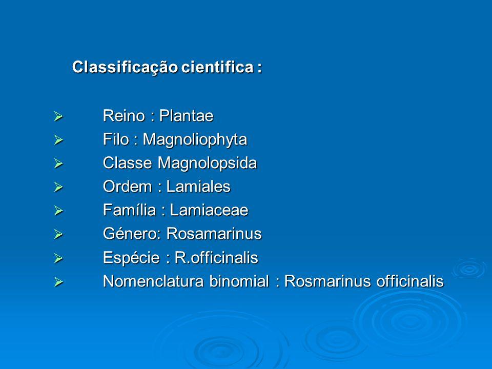 Classificação cientifica :