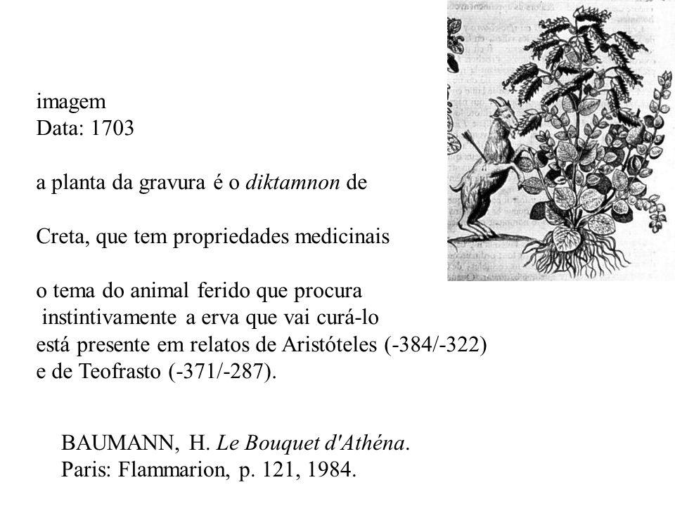 imagem Data: 1703 a planta da gravura é o diktamnon de. Creta, que tem propriedades medicinais o tema do animal ferido que procura.