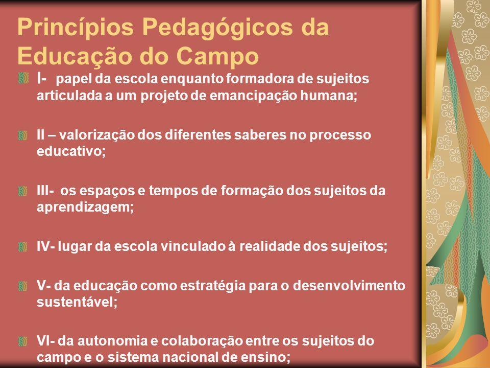 Princípios Pedagógicos da Educação do Campo