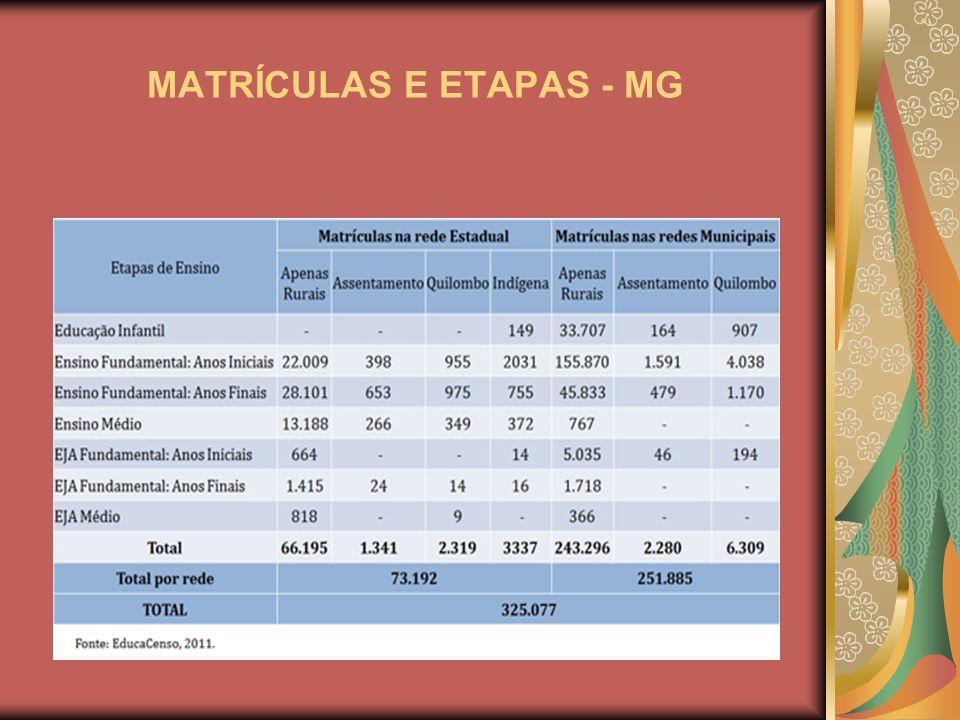 MATRÍCULAS E ETAPAS - MG