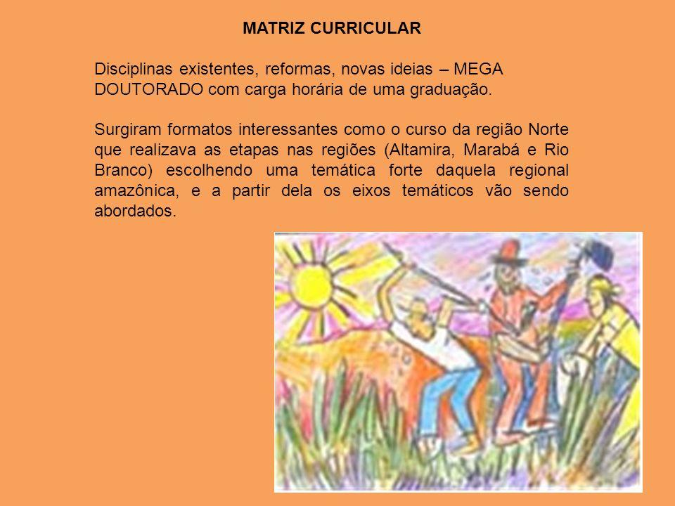 MATRIZ CURRICULAR Disciplinas existentes, reformas, novas ideias – MEGA DOUTORADO com carga horária de uma graduação.