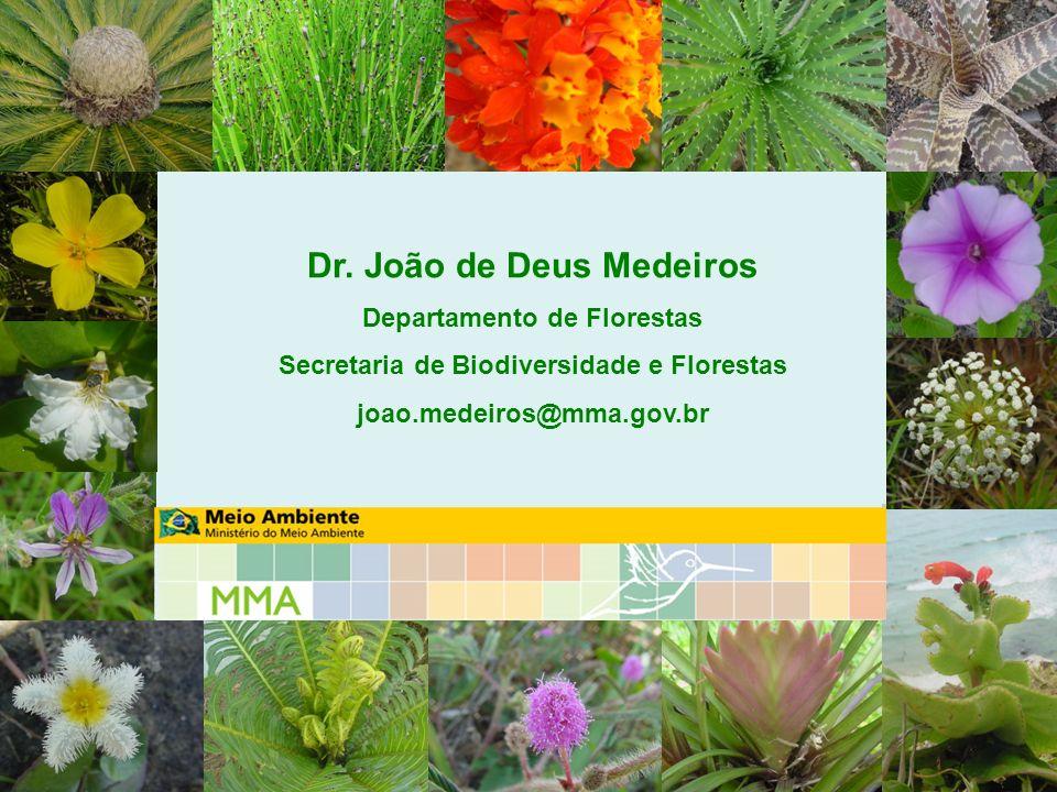 Dr. João de Deus Medeiros