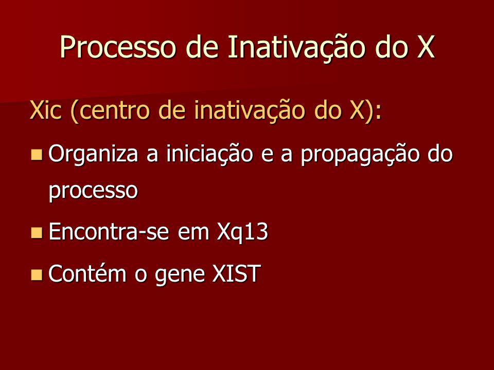Processo de Inativação do X