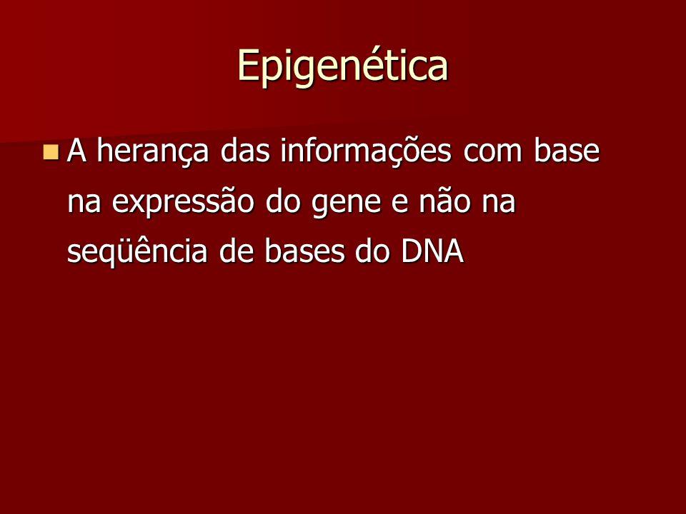 Epigenética A herança das informações com base na expressão do gene e não na seqüência de bases do DNA.