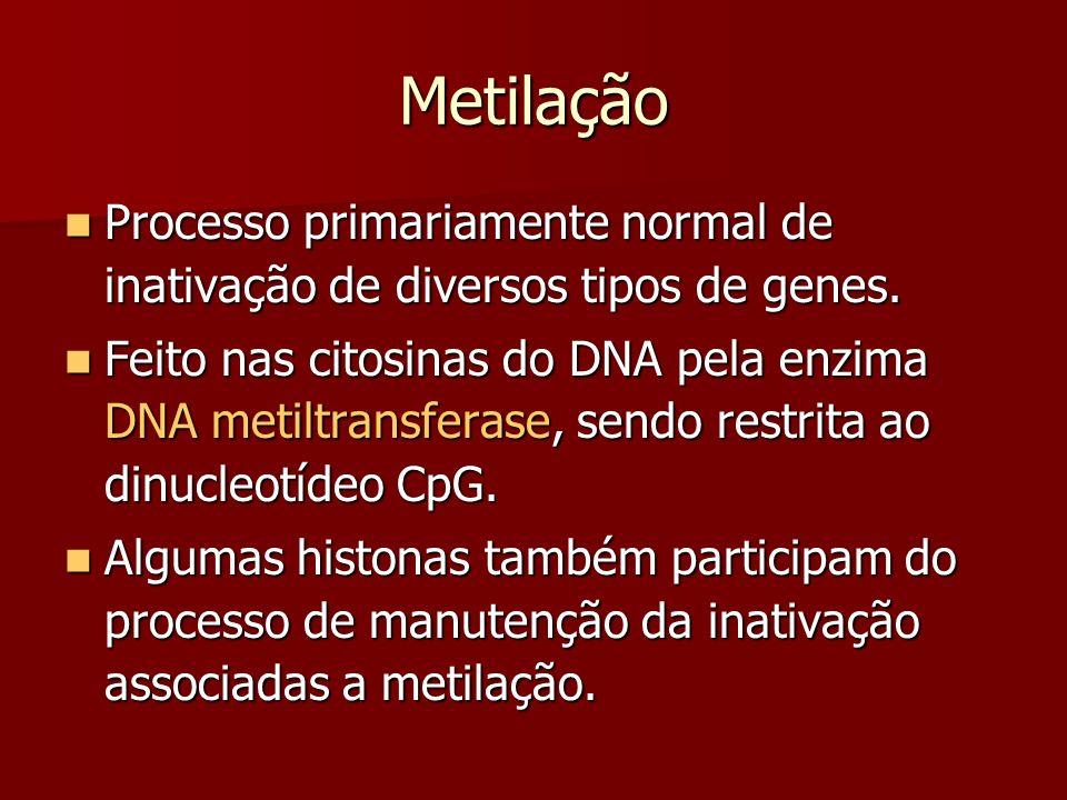 Metilação Processo primariamente normal de inativação de diversos tipos de genes.
