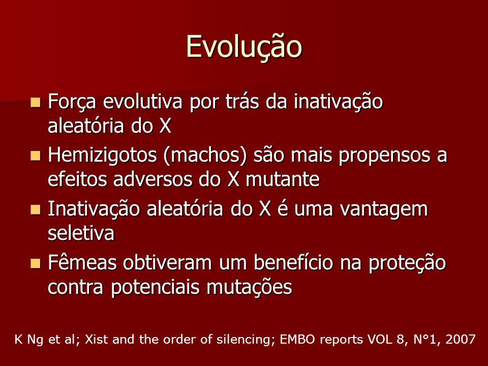 Evolução Força evolutiva por trás da inativação aleatória do X