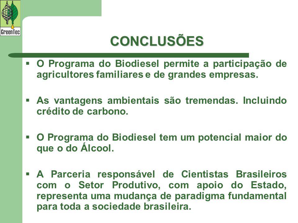 CONCLUSÕES O Programa do Biodiesel permite a participação de agricultores familiares e de grandes empresas.