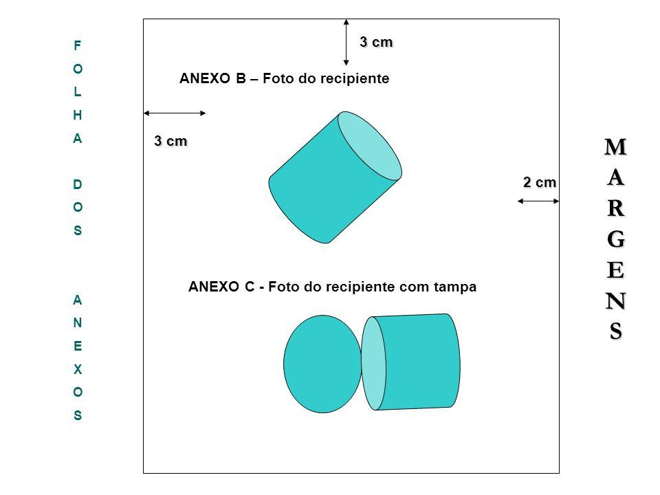 M A R G E N S 3 cm ANEXO B – Foto do recipiente 3 cm