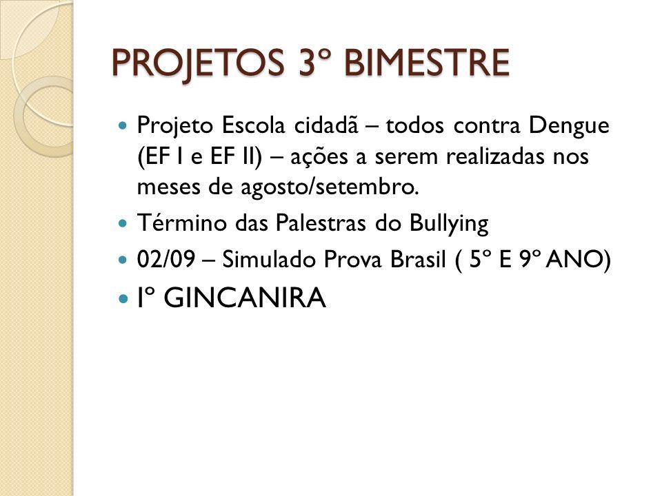PROJETOS 3º BIMESTRE Iº GINCANIRA