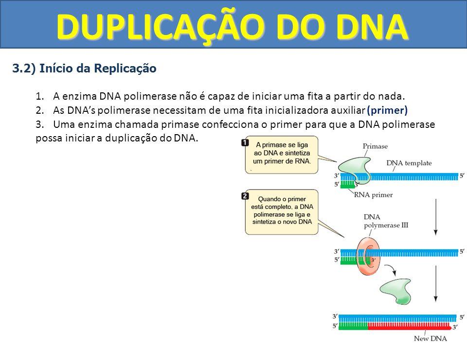 DUPLICAÇÃO DO DNA 3.2) Início da Replicação