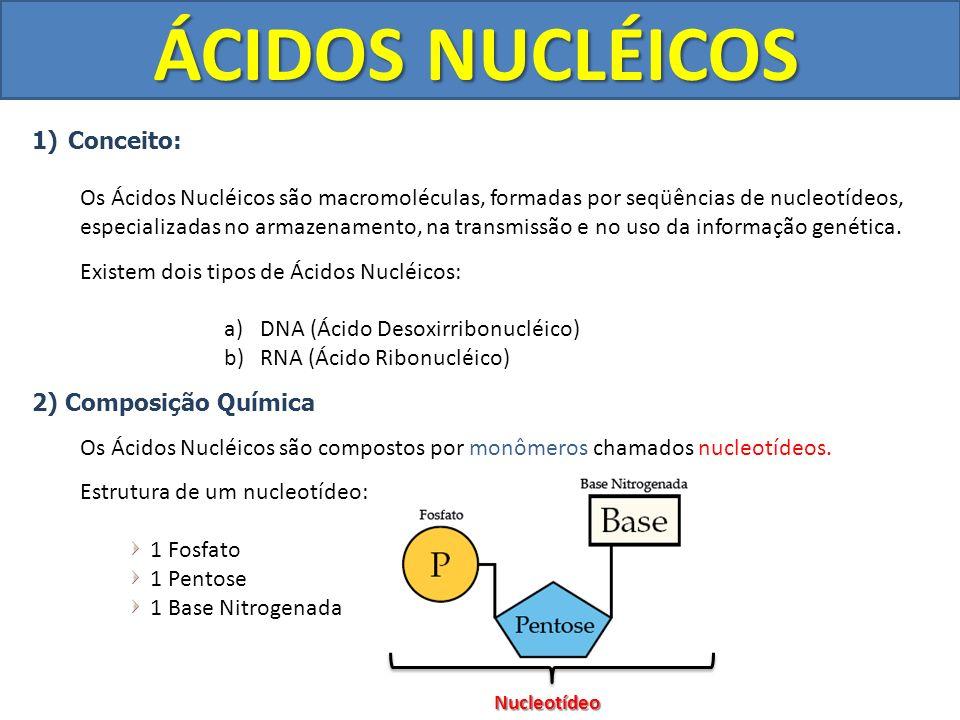 ÁCIDOS NUCLÉICOS Conceito: