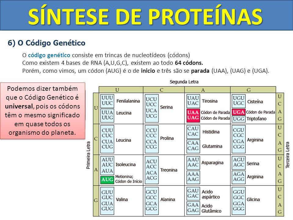 SÍNTESE DE PROTEÍNAS 6) O Código Genético