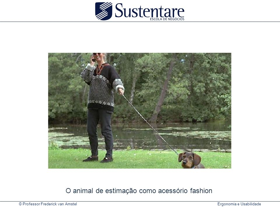 O animal de estimação como acessório fashion