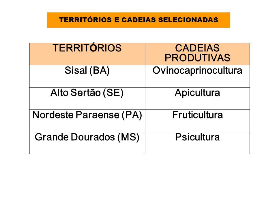 TERRITÓRIOS E CADEIAS SELECIONADAS Nordeste Paraense (PA)